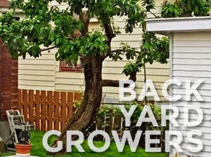 Back yard growers are our customers, too!