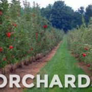 Orchardists are our biggest customer